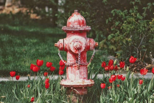 The Critical Home Fire Safety Tips Your Family Needs To Know and Follow