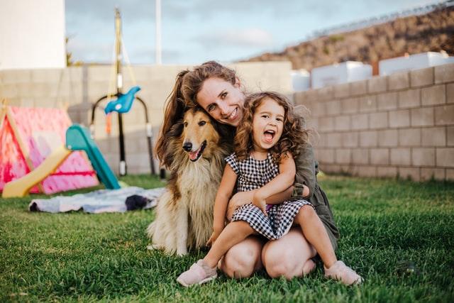 4 Popular Dog Breeds To Adopt